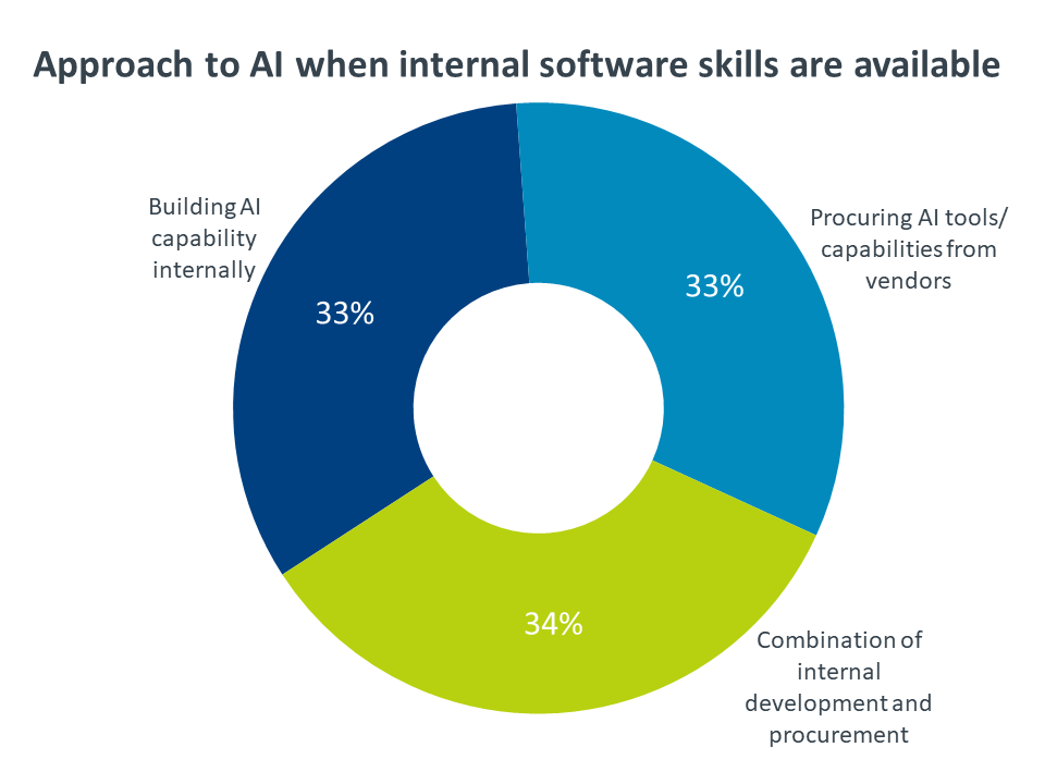 Approach to AI when internal software skills are available