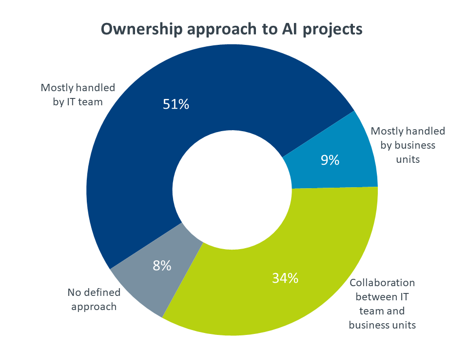 Ownership approach to AI projects